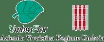 La piattaforma realizzata da gisAction per Umbraflor, la più grande realtà di produzione vivaistica dell'Umbria, consente di archiviare dati di monitoraggio forestale associandoli ad elementi in mappa.