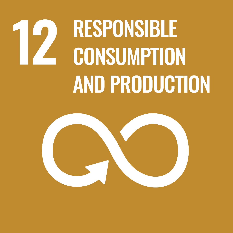 SDG MAP 11 – Città e Comunità Sostenibili